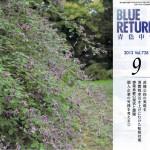 bluereturnhyousi